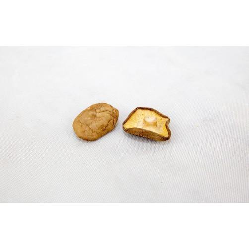 大台灣香菇(白皮)