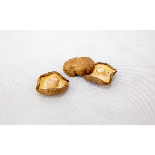 中大台灣香菇(白皮)