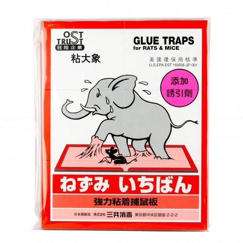 【旺陞】黏大象